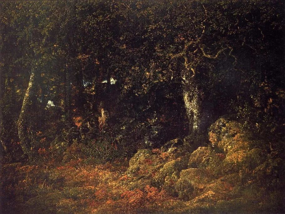 巴比松画派 法国Théodore Rousseau作品欣赏插图13