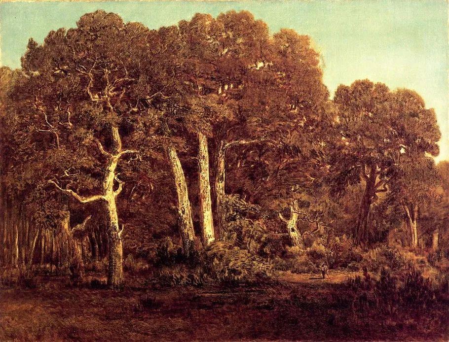 巴比松画派 法国Théodore Rousseau作品欣赏插图21