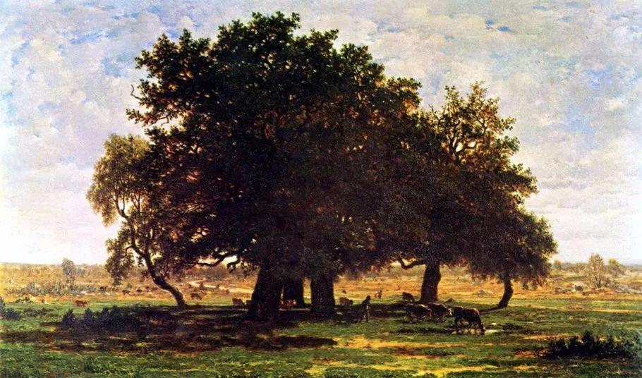 巴比松画派 法国Théodore Rousseau作品欣赏插图25