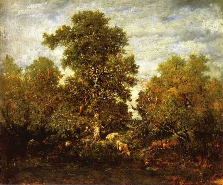 巴比松画派 法国Théodore Rousseau作品欣赏插图27