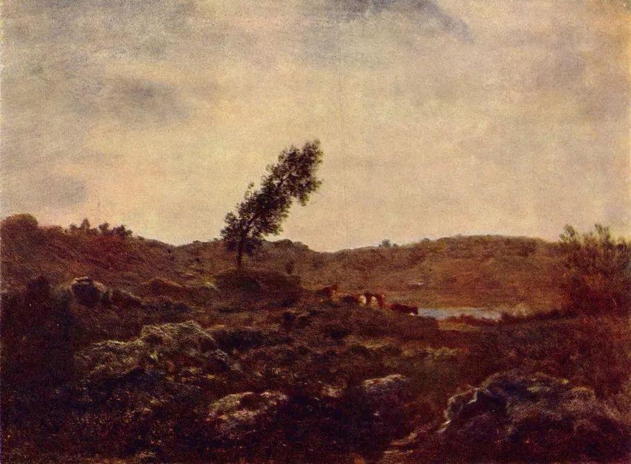 巴比松画派 法国Théodore Rousseau作品欣赏插图51
