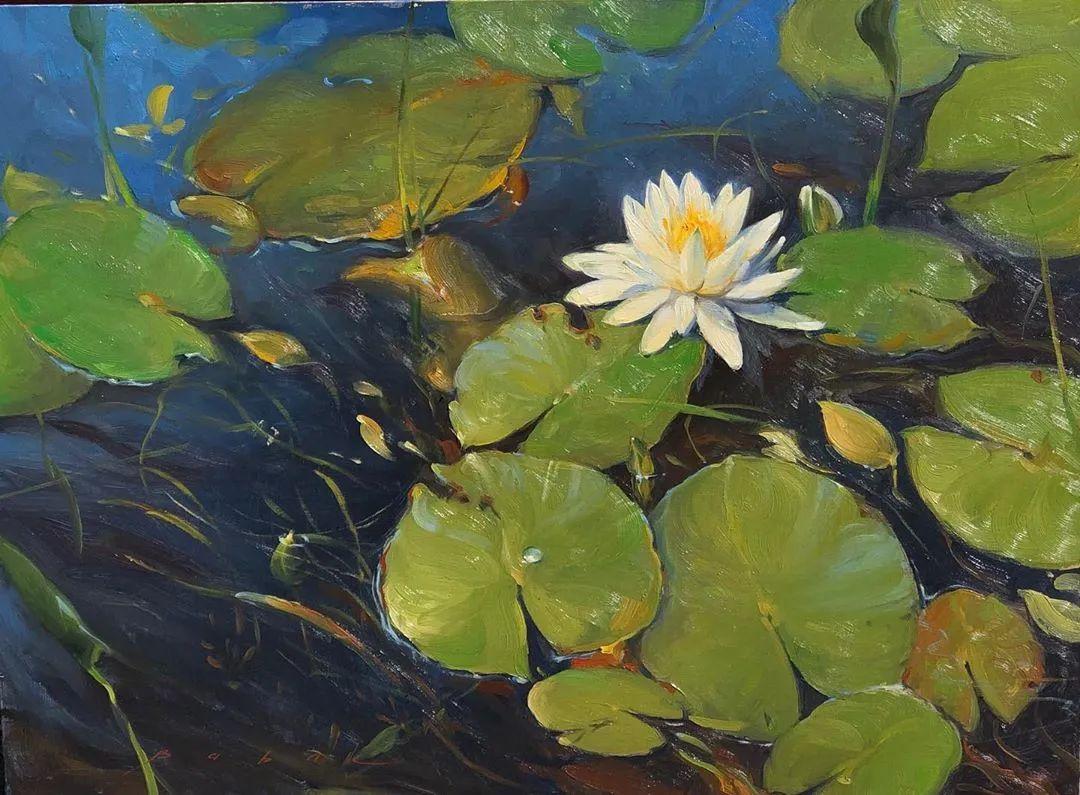 好美的风景与花卉,深入自然才能画出最美的画面!插图71