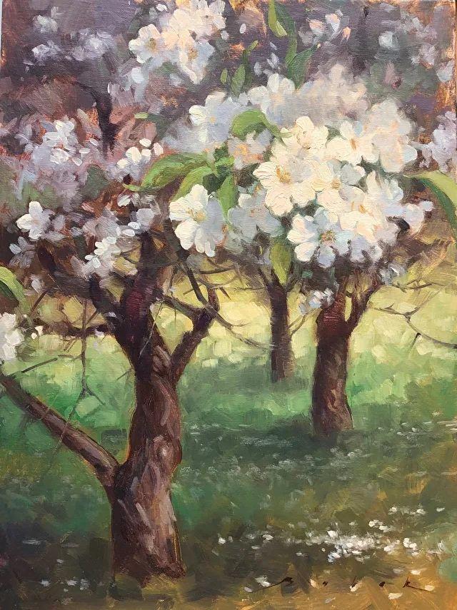 好美的风景与花卉,深入自然才能画出最美的画面!插图77