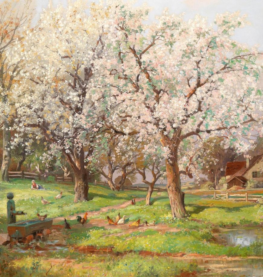 鲜花盛开的宁静乡村,风景美丽而浪漫!插图47