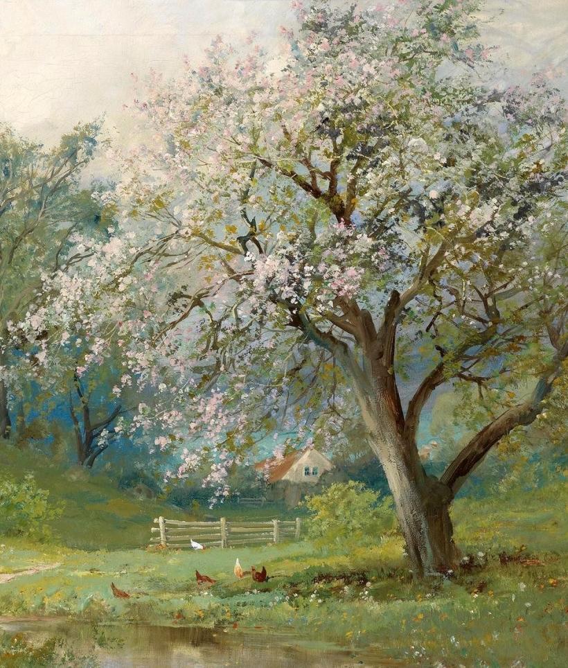 鲜花盛开的宁静乡村,风景美丽而浪漫!插图51