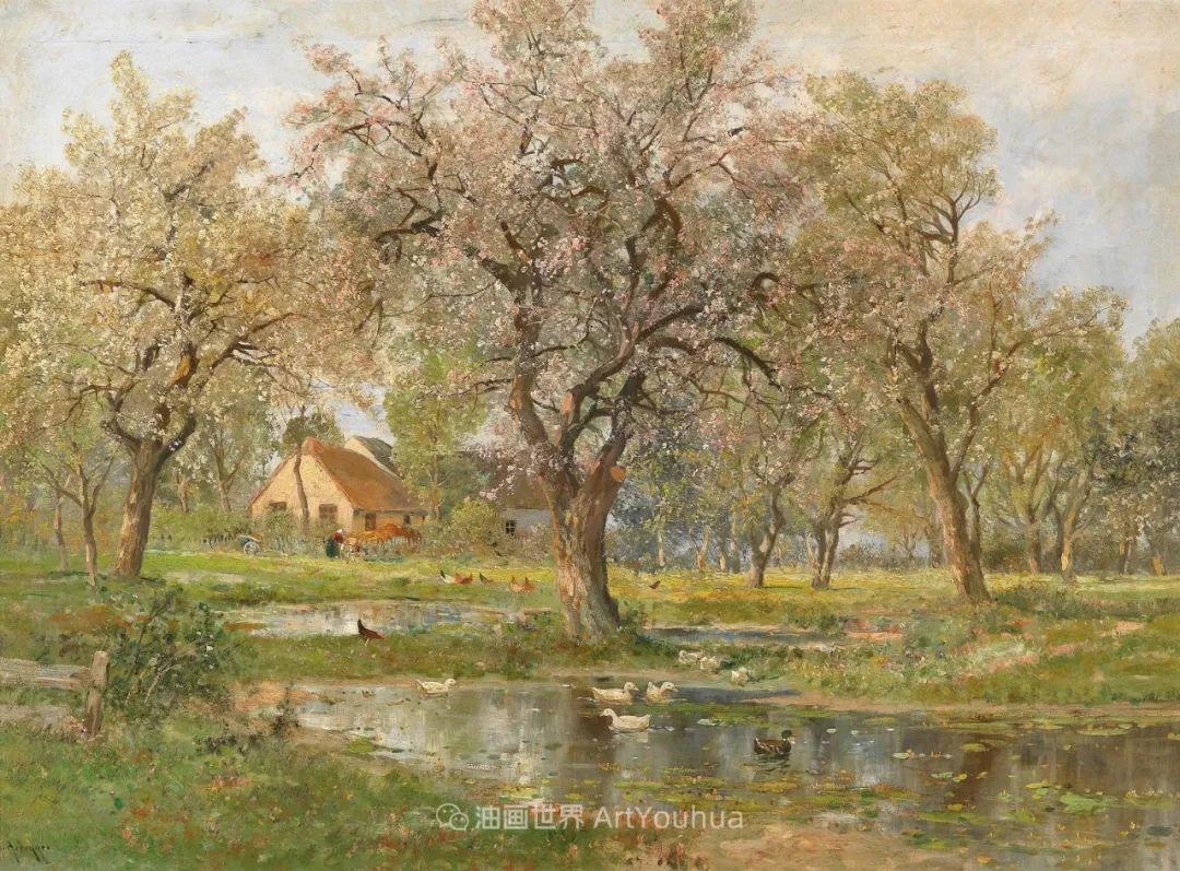 鲜花盛开的宁静乡村,风景美丽而浪漫!插图83