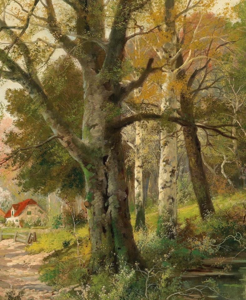一派宁静秀丽的乡村景色,令人陶醉的色彩!插图65
