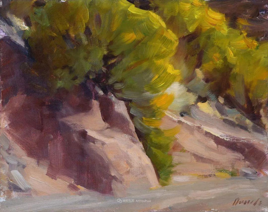 美国印象派画家安东·诺威尔斯插图29