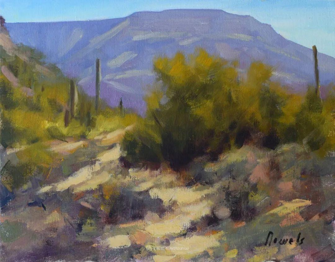 美国印象派画家安东·诺威尔斯插图37