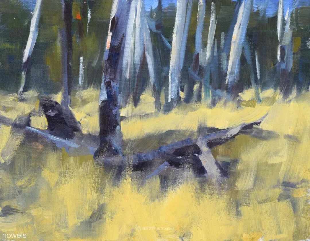 美国印象派画家安东·诺威尔斯插图57