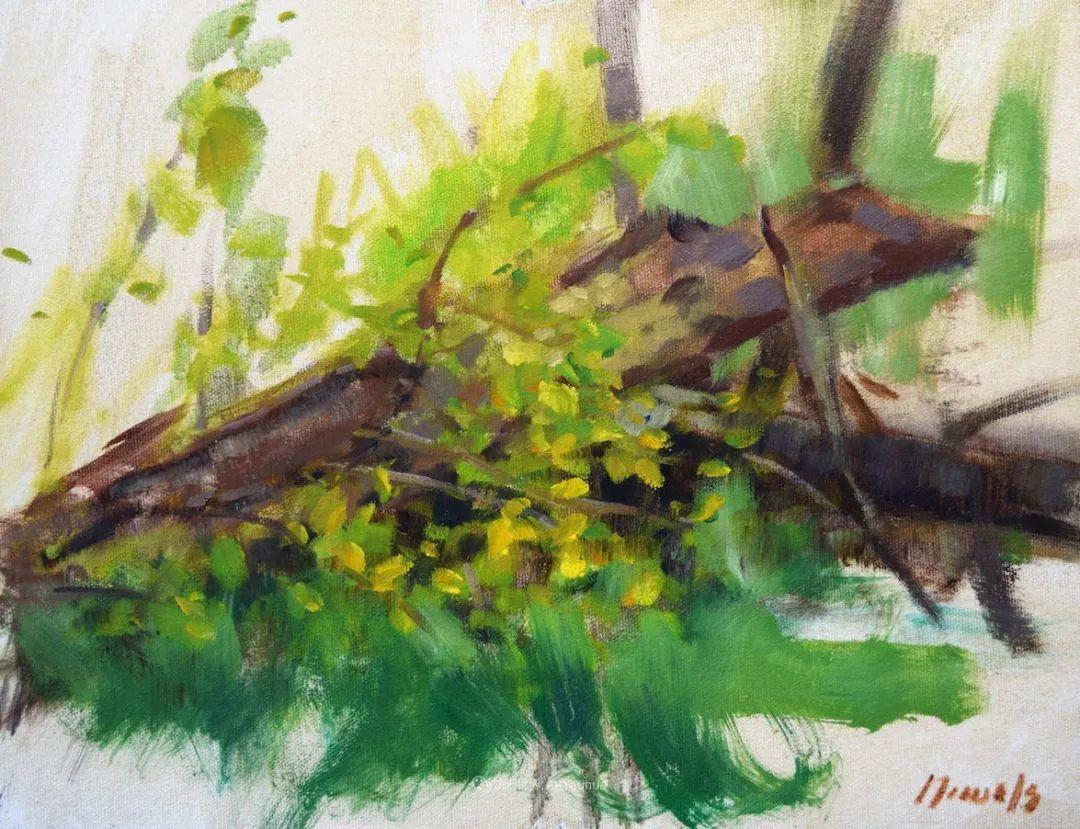 美国印象派画家安东·诺威尔斯插图75