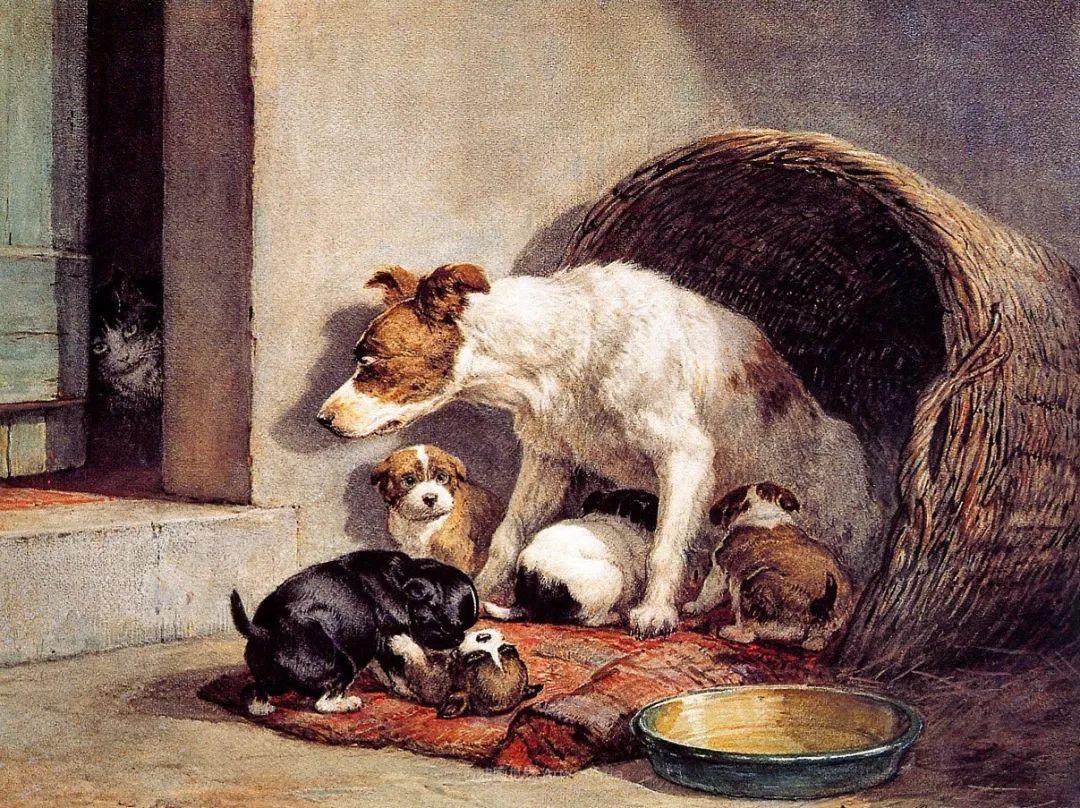 100多年前荷兰女画家笔下的狗,活灵活现!插图7