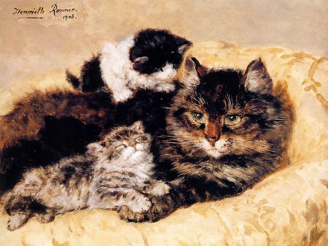 100年前她画了超多猫,姿态万千,惟妙惟肖插图65