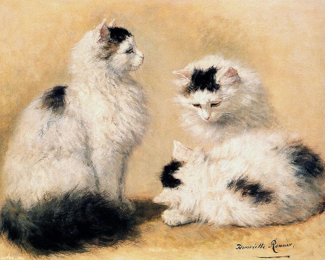 100年前她画了超多猫,姿态万千,惟妙惟肖插图141