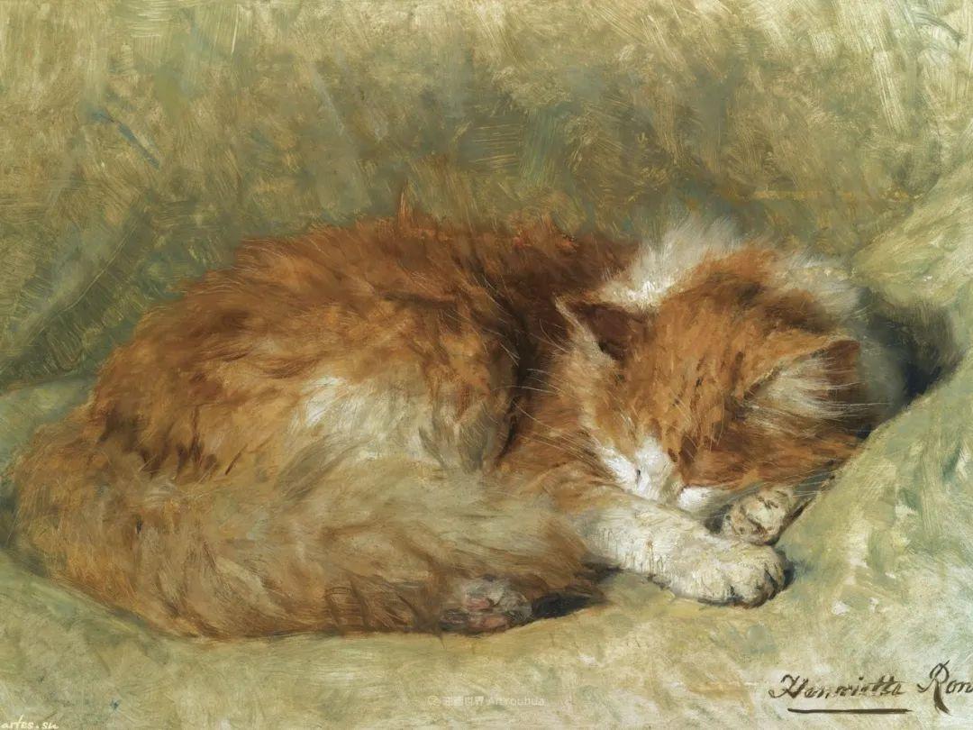 100年前她画了超多猫,姿态万千,惟妙惟肖插图163