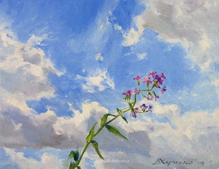 她的花儿总带着阳光,让人看了心都敞亮了!插图41