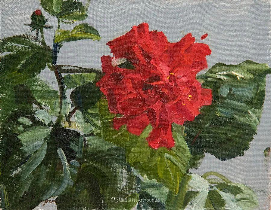 她的花儿总带着阳光,让人看了心都敞亮了!插图73