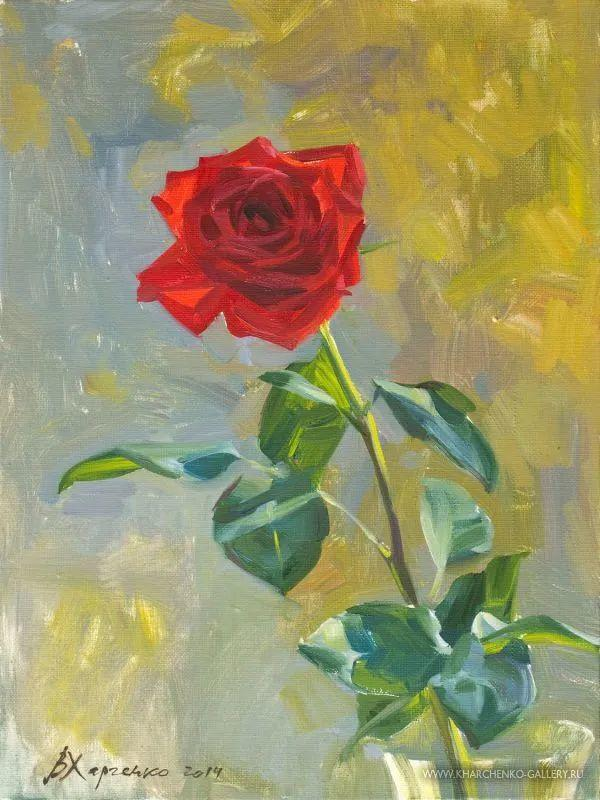 她的花儿总带着阳光,让人看了心都敞亮了!插图112