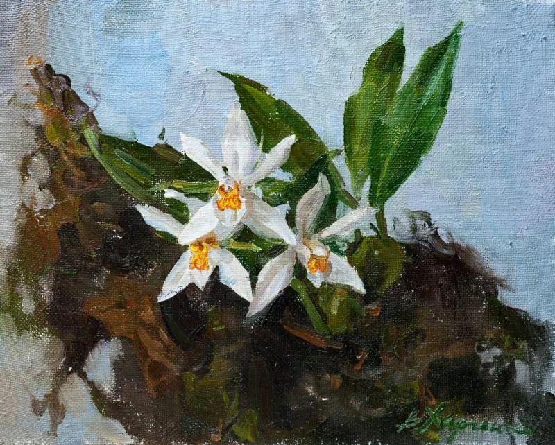 她的花儿总带着阳光,让人看了心都敞亮了!插图134