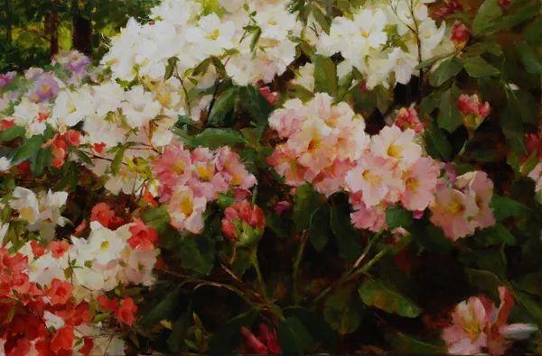 美美的花,美国女画家凯西·安德森插图14