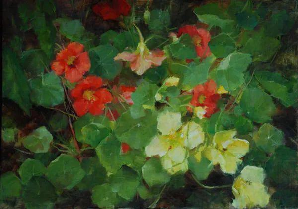 美美的花,美国女画家凯西·安德森插图29