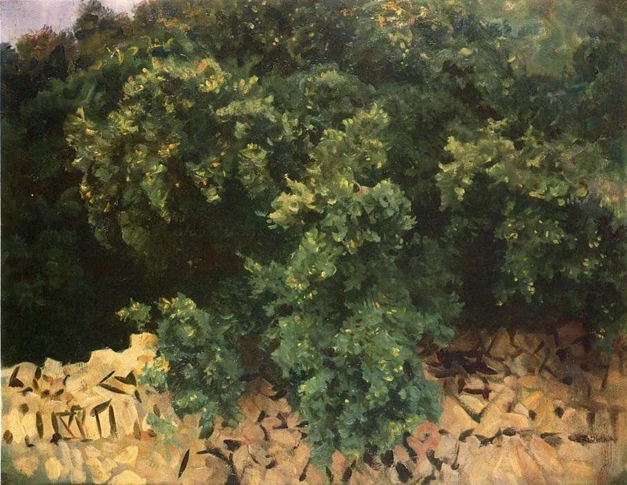 萨金特风景、人物、静物作品精选 117幅插图35