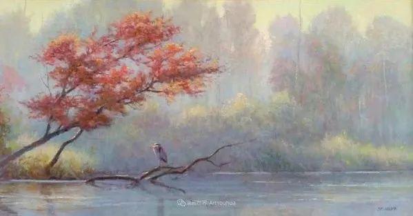 感受转瞬即逝的光和雾插图73
