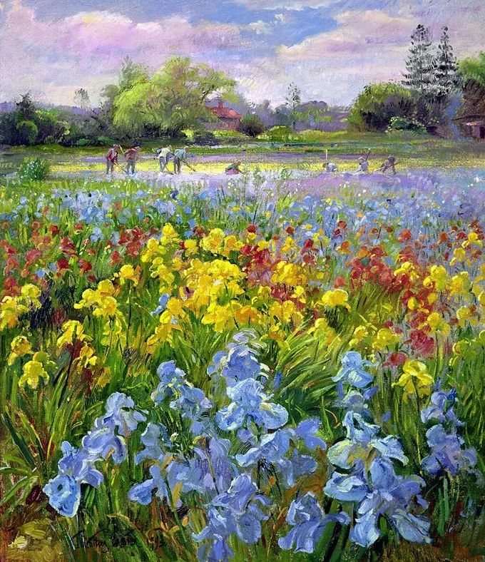 盛开的花园景色,色彩斑斓的风景!插图1