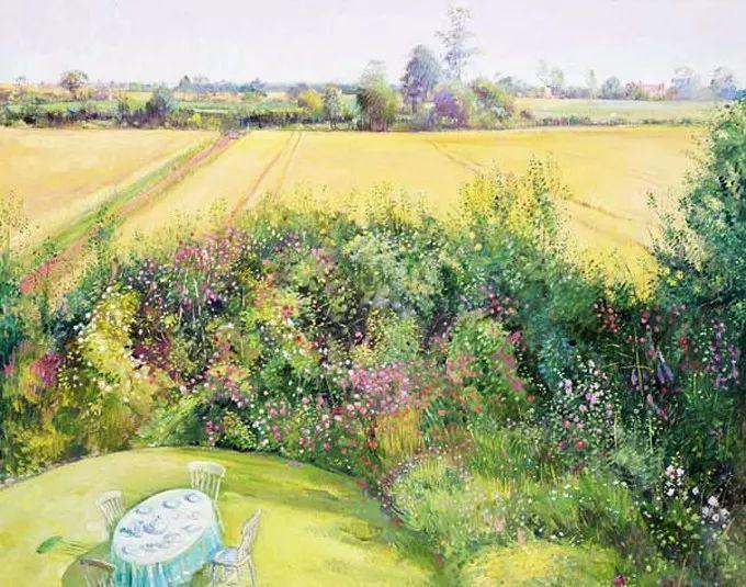 盛开的花园景色,色彩斑斓的风景!插图39