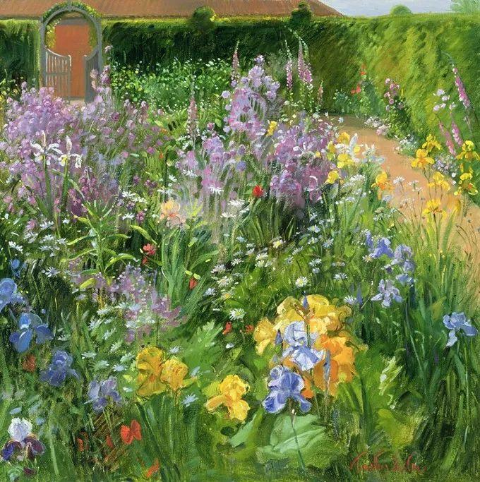 盛开的花园景色,色彩斑斓的风景!插图43