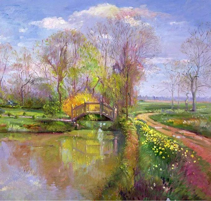 盛开的花园景色,色彩斑斓的风景!插图65