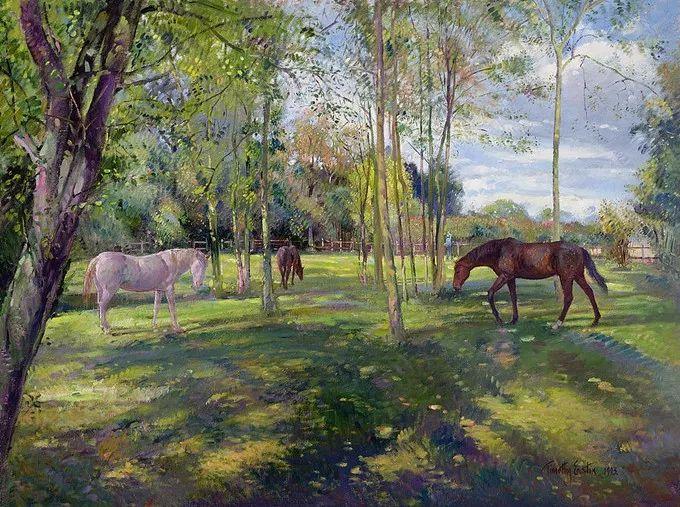 盛开的花园景色,色彩斑斓的风景!插图67