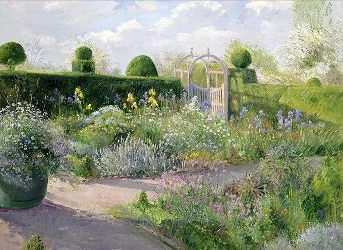 盛开的花园景色,色彩斑斓的风景!插图69