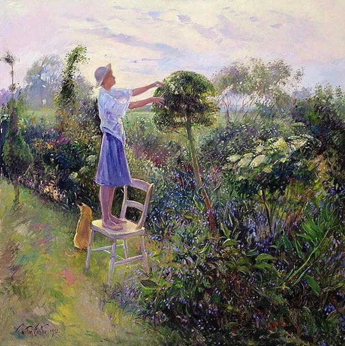 盛开的花园景色,色彩斑斓的风景!插图73