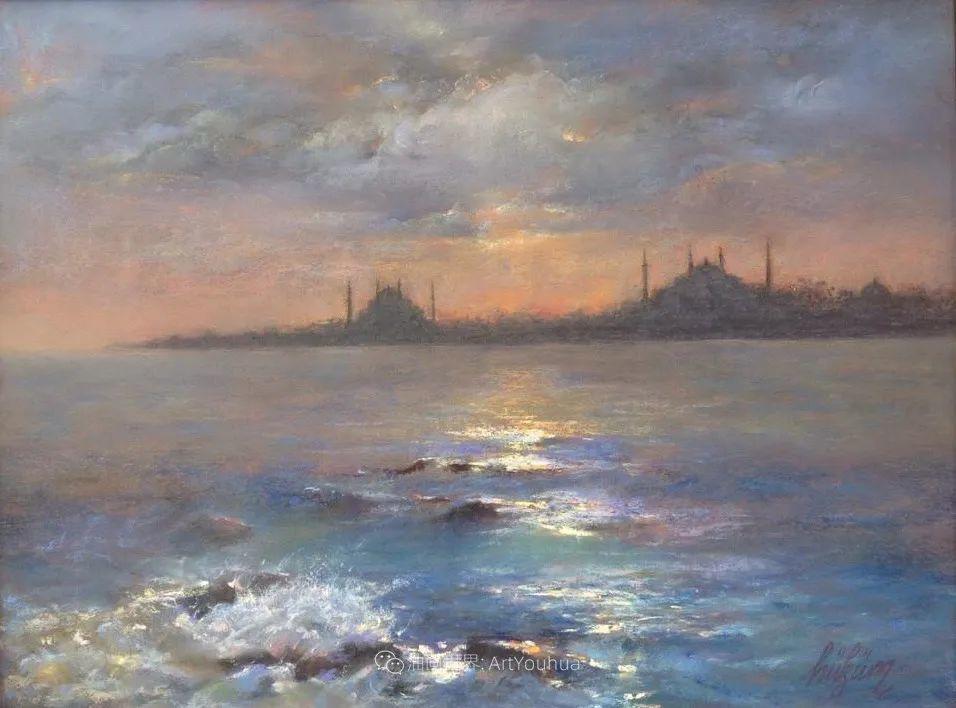 风景 Javad Soleimanpour (中)插图29