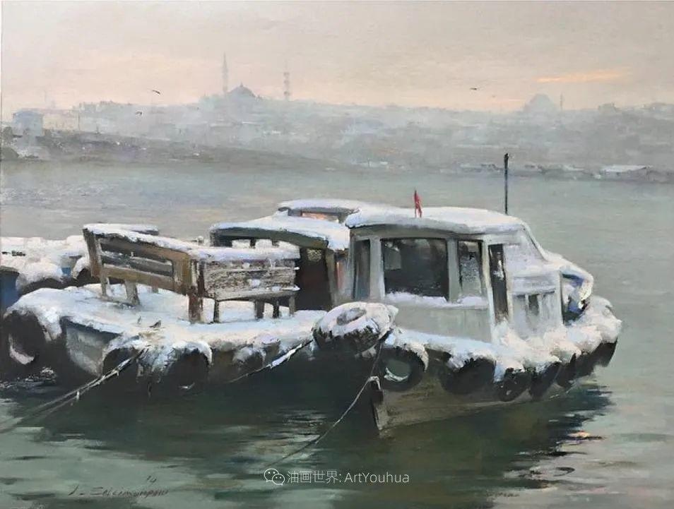 风景 Javad Soleimanpour (中)插图33