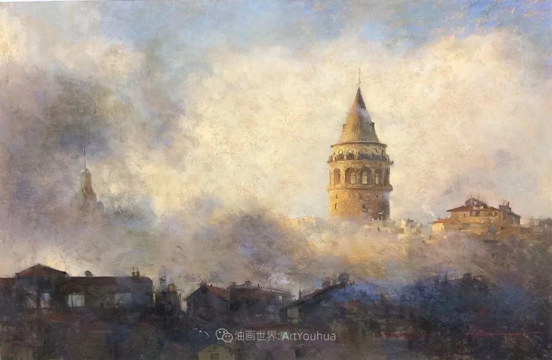 风景 Javad Soleimanpour (中)插图45