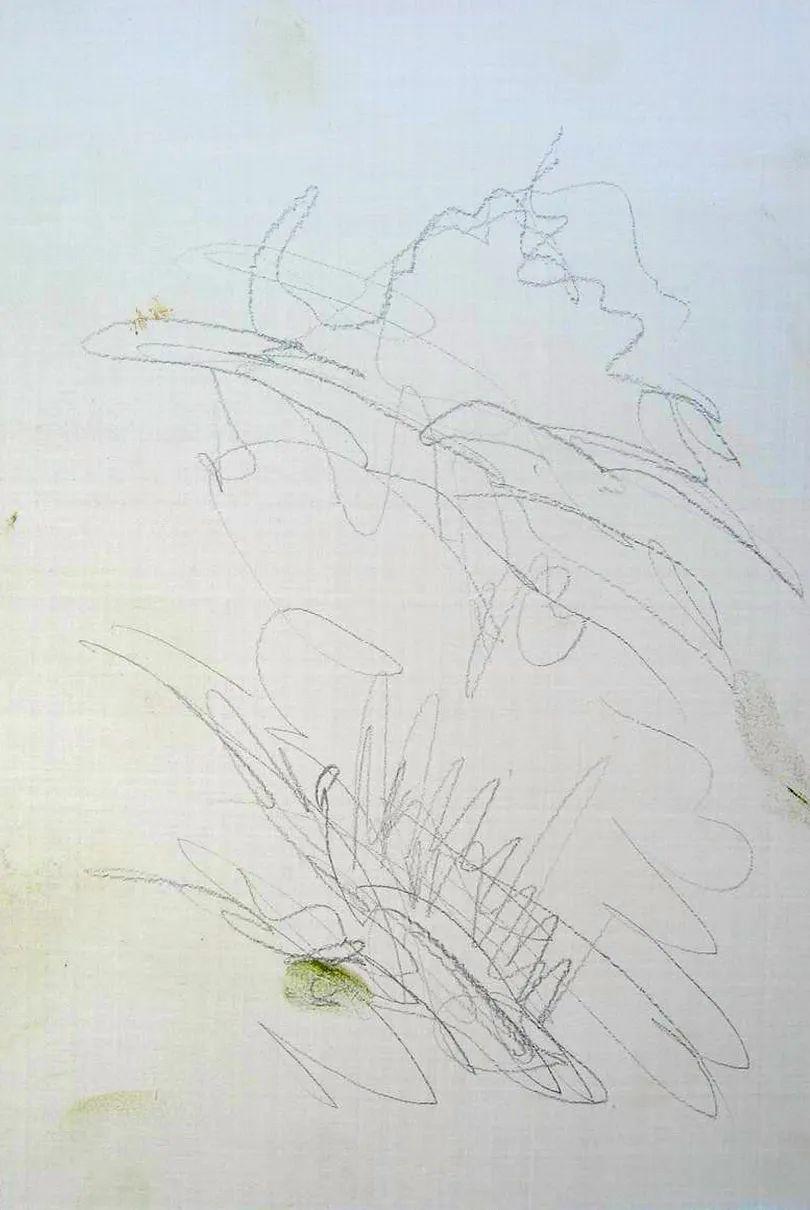 绘画步骤作品二,俄罗斯画家谢尔盖·图图诺夫插图5