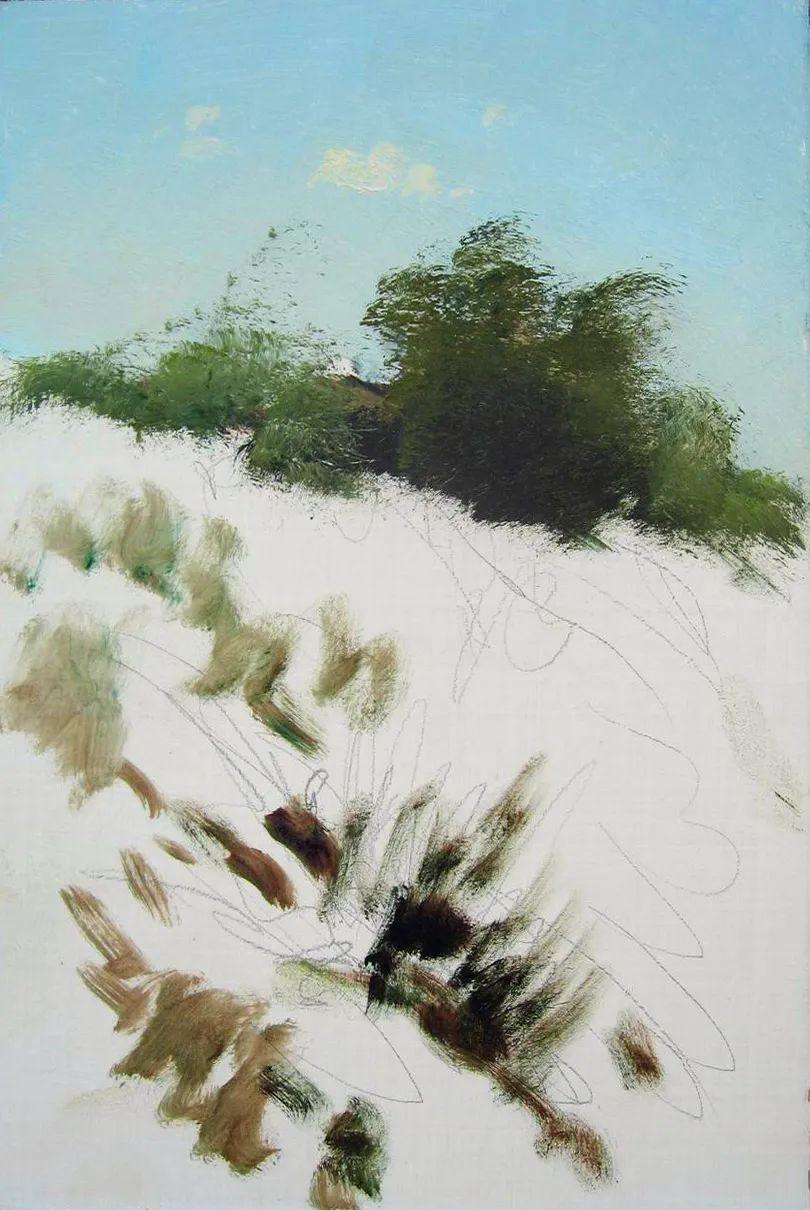 绘画步骤作品二,俄罗斯画家谢尔盖·图图诺夫插图9