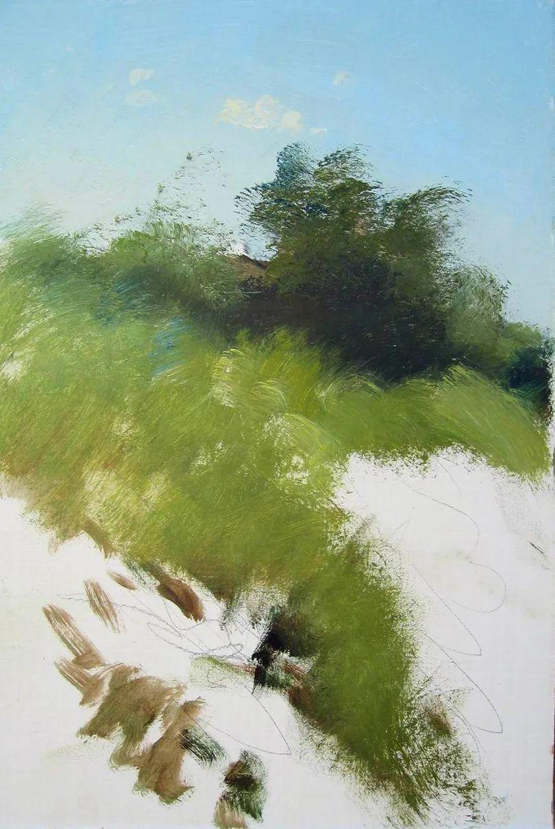 绘画步骤作品二,俄罗斯画家谢尔盖·图图诺夫插图11