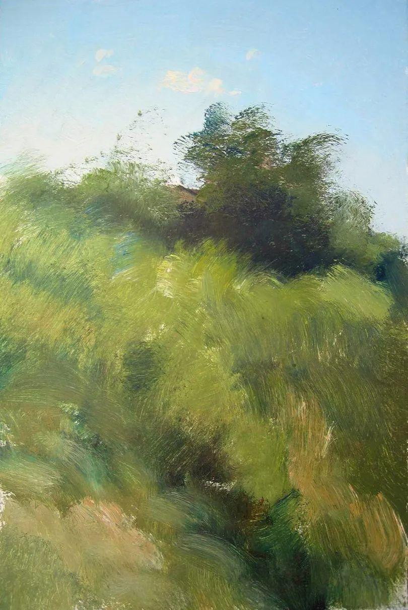 绘画步骤作品二,俄罗斯画家谢尔盖·图图诺夫插图15