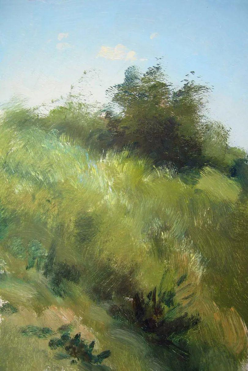 绘画步骤作品二,俄罗斯画家谢尔盖·图图诺夫插图19