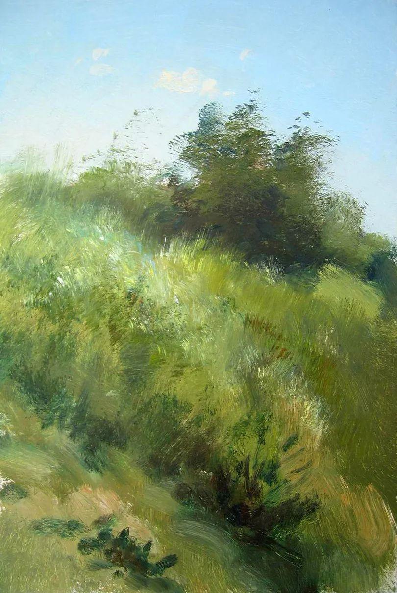 绘画步骤作品二,俄罗斯画家谢尔盖·图图诺夫插图21