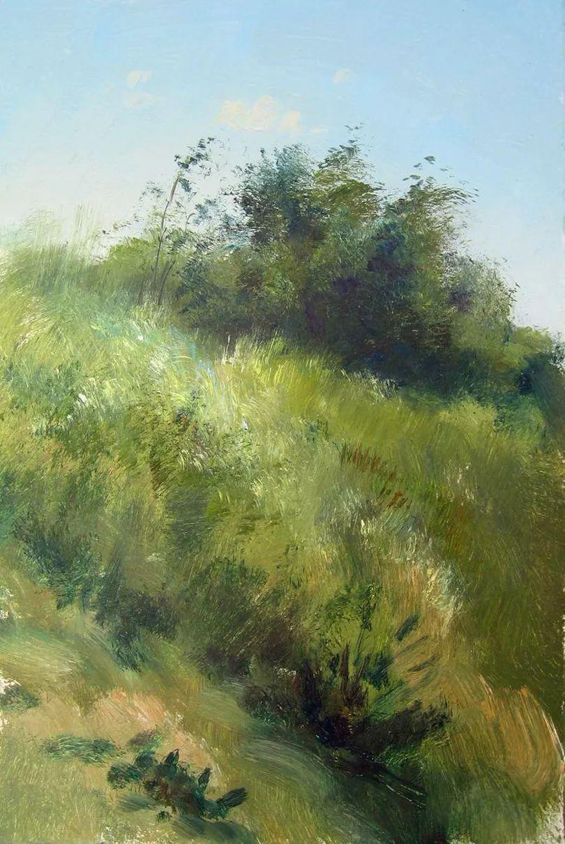 绘画步骤作品二,俄罗斯画家谢尔盖·图图诺夫插图23