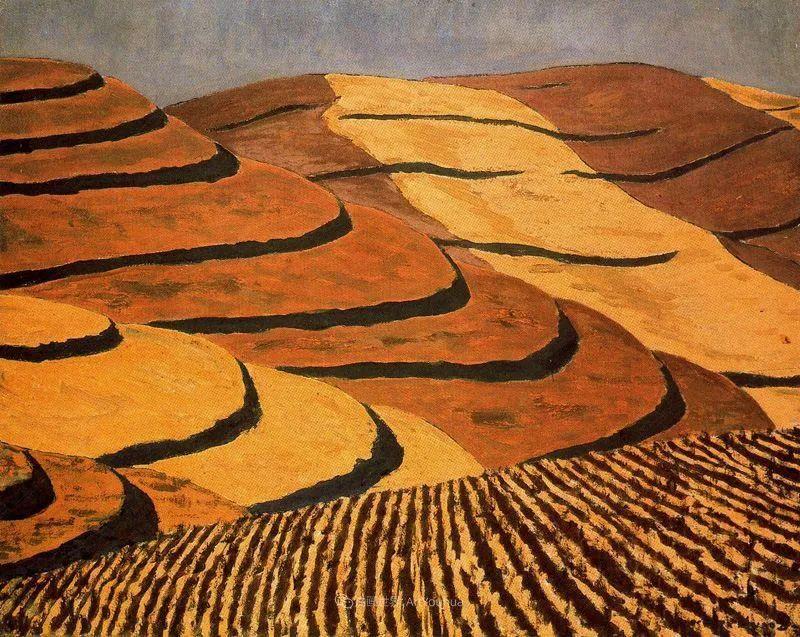 质朴的风景,干燥土地上重复着的孤木!插图3