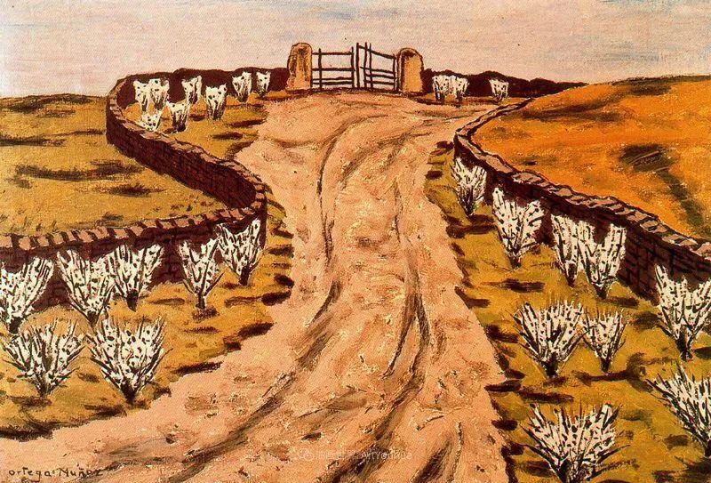 质朴的风景,干燥土地上重复着的孤木!插图9