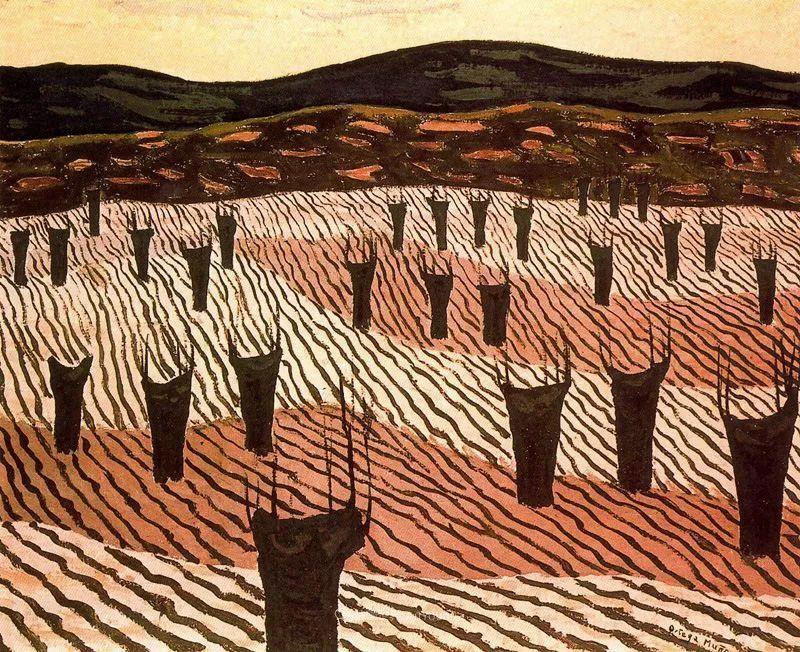 质朴的风景,干燥土地上重复着的孤木!插图13