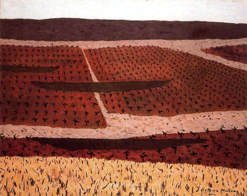 质朴的风景,干燥土地上重复着的孤木!插图19