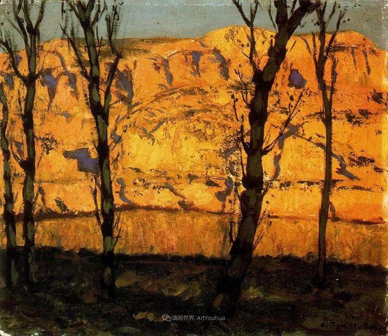 质朴的风景,干燥土地上重复着的孤木!插图21