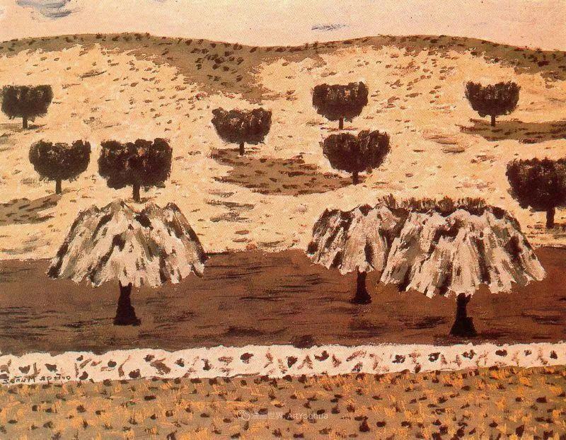 质朴的风景,干燥土地上重复着的孤木!插图45
